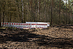 Waldrodungen zur Markierung der ehem. Lagergrenze