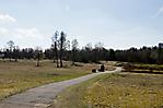 Blick über das Gelände auf ehem. Krematoriumsstandort