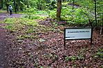 Zugang zur Gedenkstätte im Wald