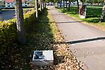 Weg mit Infotafel und Denkmal