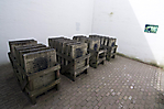 1995 beschmierte Tafeln des Denkmals auf dem ehem. Hinrichtungsplatz